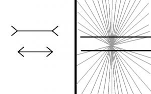 Ejemplo de ilusiones ópticas para demostrar como es la creatividad y autosugestión.